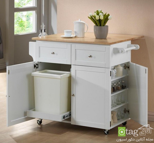 garbage-cans-hidden-in-cabinetry-ideas (11)