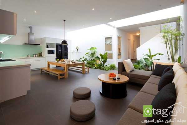 indoor plants for living room (1)