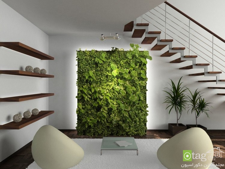 indoor plants for living room (2)