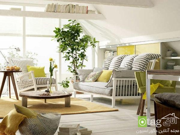 indoor plants for living room (4)