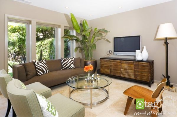 indoor plants for living room (5)