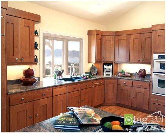 kitchen-knob-design-ideas (4)