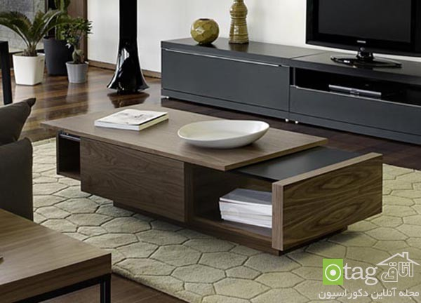 living-room-table-design-ideas (9)