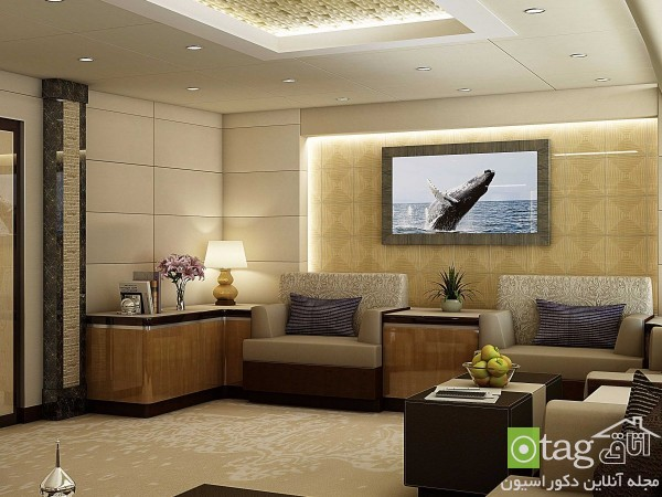 luxury-home-inside-private-airplane-design (3)