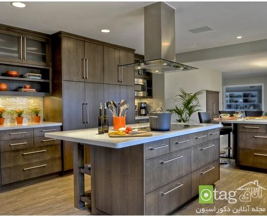 luxury-kitchen-cabinet-designs (6)