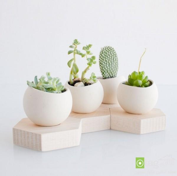 modern-and-artistic-planter-design-ideas (3)