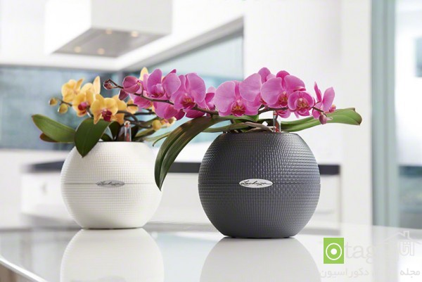 modern-and-artistic-planter-design-ideas (7)