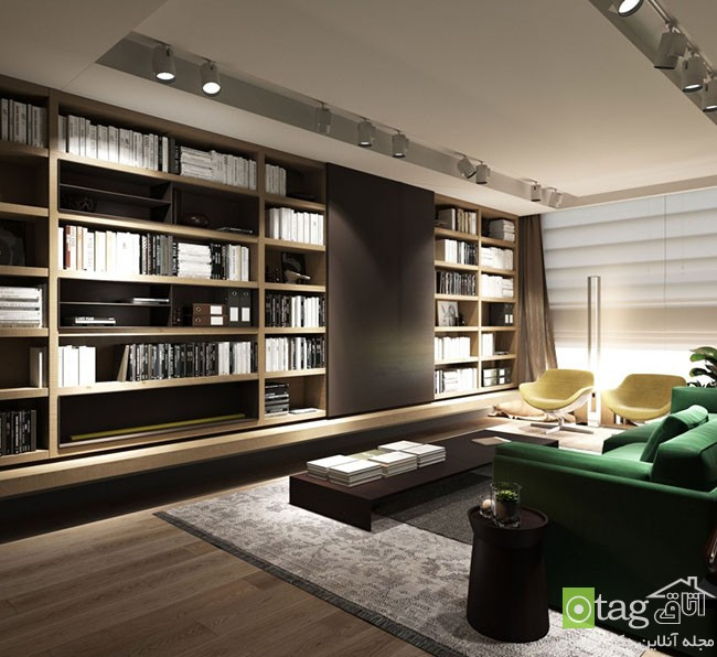 modern-bachelor-apartment-designs (2)