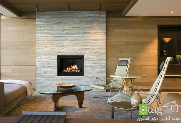 modern-fireplaces (7)
