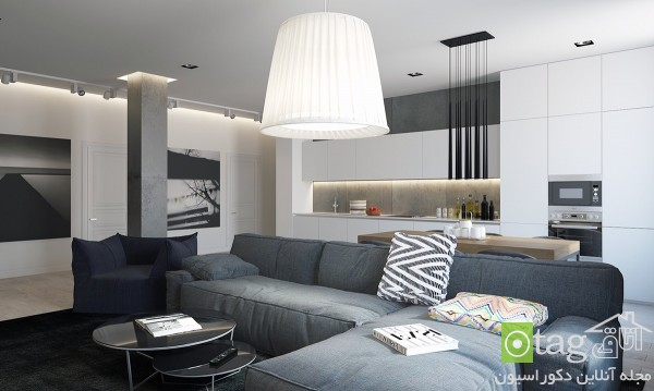 modern-sofa-designs-in-living-room (5)