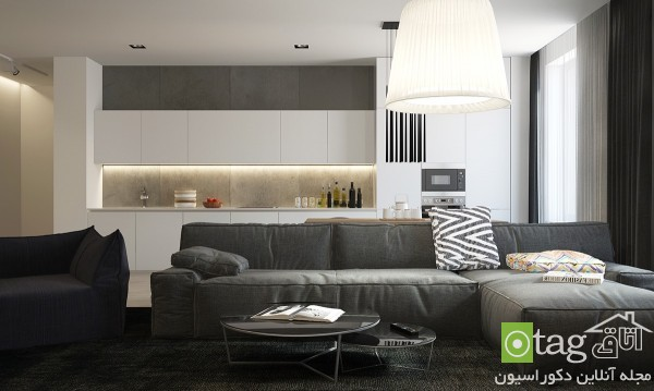 modern-sofa-designs-in-living-room (8)