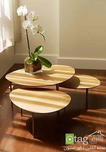 modern-sofa-table-design-ideas (3)