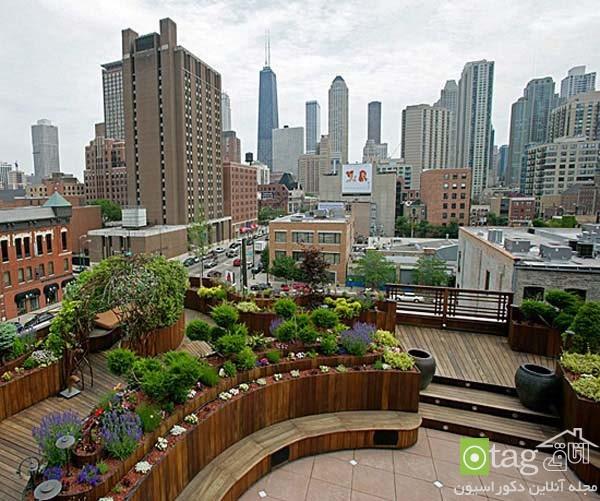 roof-garden-designs (13)