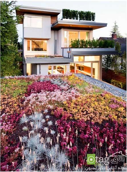 roof-garden-designs (7)