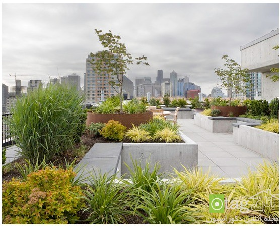 roof-garden-designs (9)