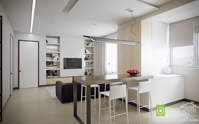 single-bedroom-apartment-interior-designs (2)