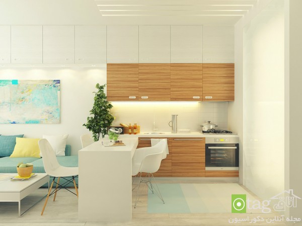 small-29-square-meter-interior-design (8)