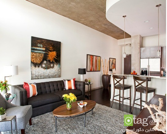 small-apartments-designs-ideas-image (18)