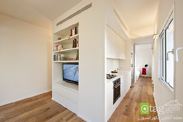 small-apartments-designs-ideas-image (19)