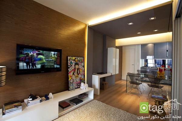 small-apartments-designs-ideas-image (5)