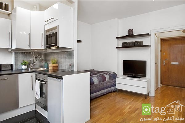small-apartments-designs-ideas-image (6)