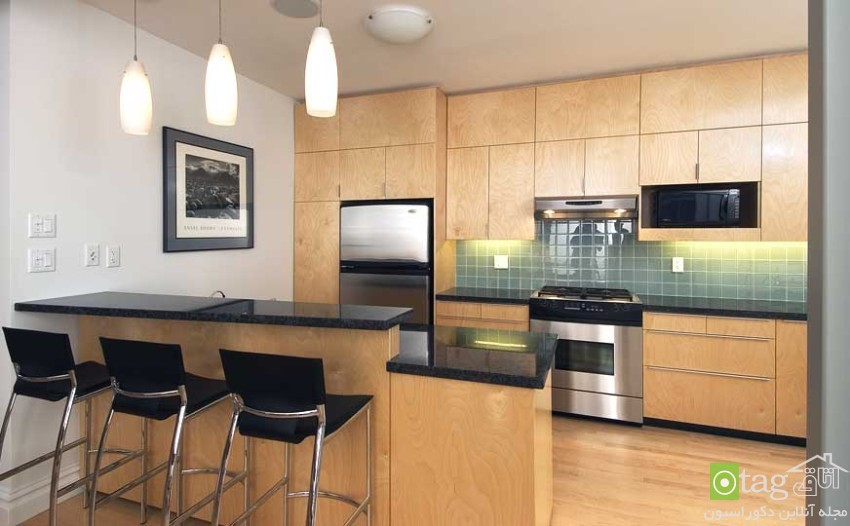 small-kitchens-cabinet-designs (5)