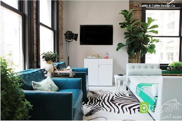 small-living-room-decoration-ideas (5)