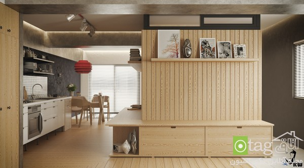 studio-apartment-design-ideas (1)