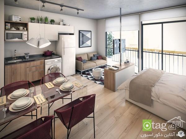 studio-apartment-design-ideas (2)
