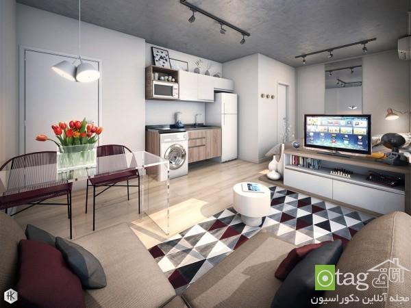 studio-apartment-design-ideas (3)