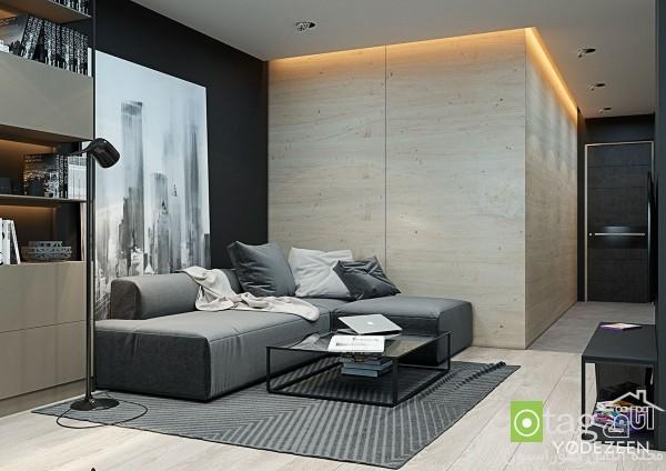 studio-apartment-design-ideas (7)
