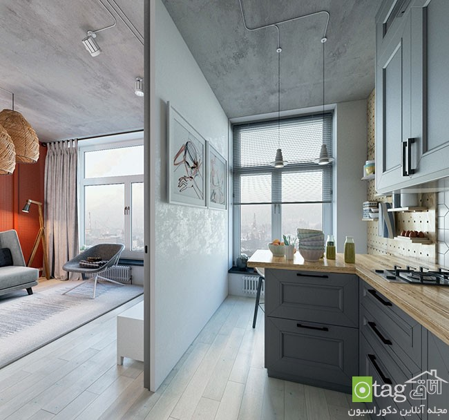 two-different-decoration-on-one-small-apartment (5)