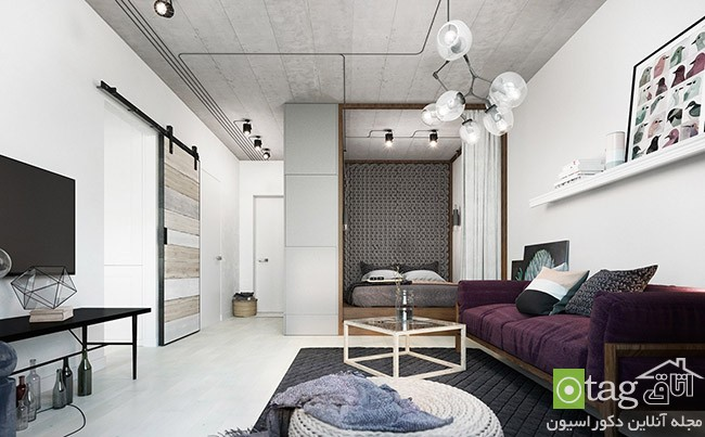 two-different-decoration-on-one-small-apartment (8)