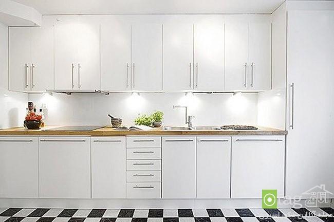 white-kitchen-cabinet-designs (1)