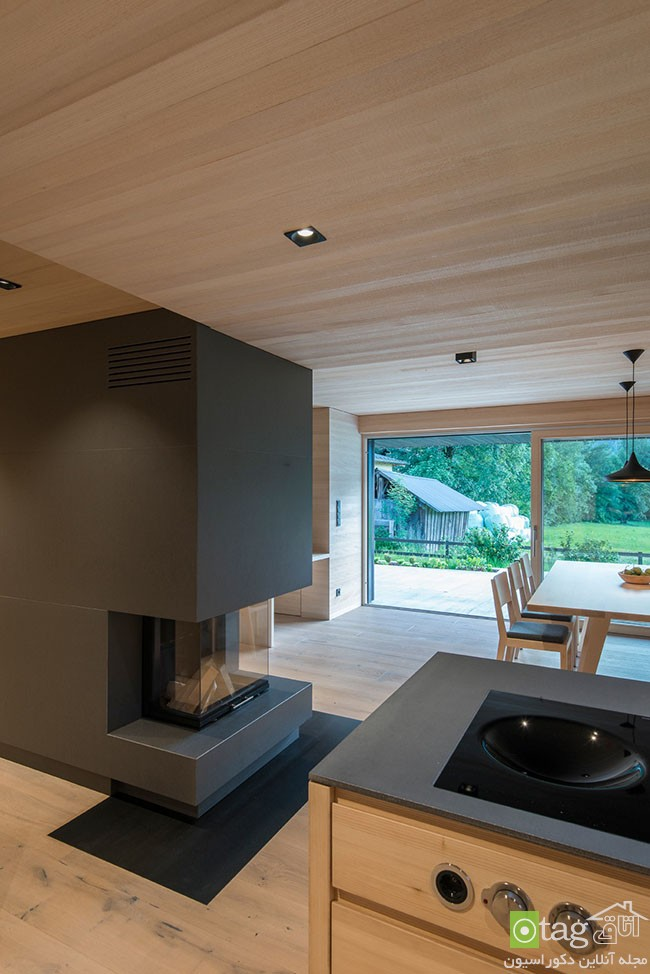 wood-in-interior-designs (2)