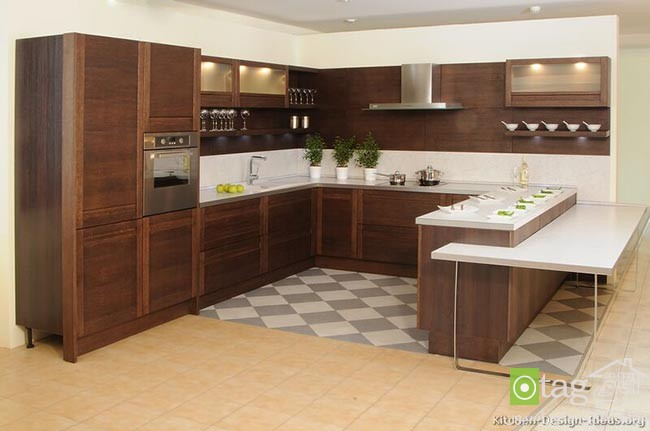 wood-kitchen-cabinet-designs (4)